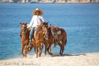 LOS CABOS DAY 1 (55)